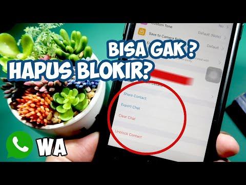 cara-membuka-blokir-kontak-wa-di-whatsapp