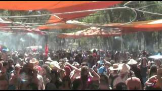 Rainbow Serpent Festival 2010 - Overview