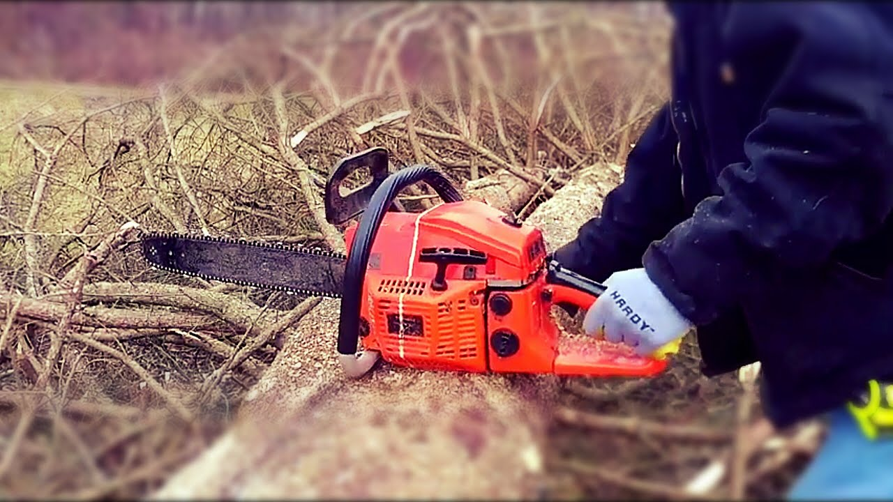 THE RETURN OF THE CHINESE CHAINSAW & TIMBERPRO!!! LIMBING AND ...
