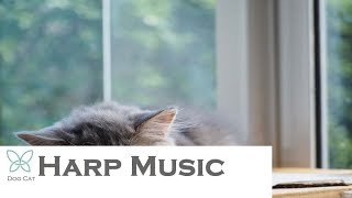 Cats Love Music Relieved, Calm, Depressed Treatment