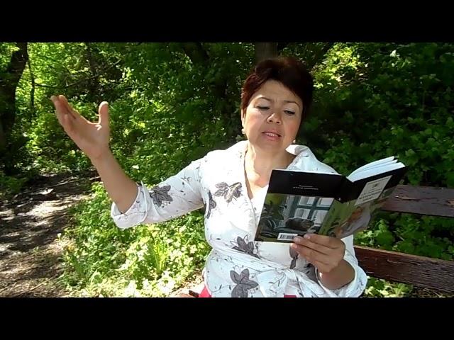 Изображение предпросмотра прочтения – ГалинаНовоточинова читает произведение «Молния» А.И.Солженицына