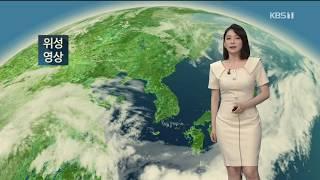 9시뉴스 강아랑기상캐스터 200616