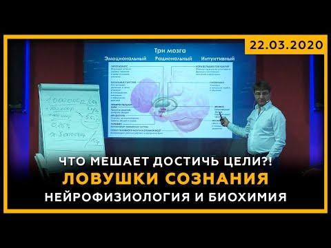 Что мешает достичь цели?! Ловушки сознания. Нейрофизиология и Биохимия. Сергей Змеев. 18+