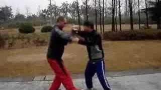Shen Tiegen-Fred Van Hove, push hands