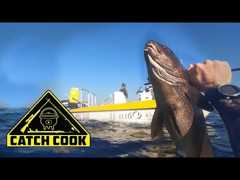 Spearfishing three reef edibles off the KZN Coast , South Africa | CATCH COOK