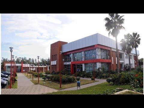 L'OMPIC et le barreau de Casablanca s'allient pour le développement des droits de propriété - La ...