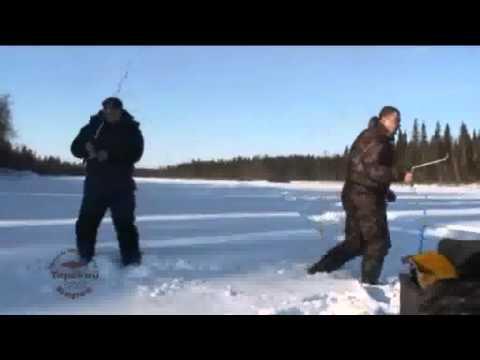 рыбалка пялица кольский