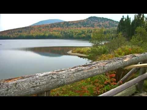 Why do you love New Brunswick?/Pourquoi aimez-vous le Nouveau-Brunswick