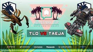 New Vipers vs New Battlecruisers?? TLO vs Taeja [ZvT] Homestory Cup XX Starcraft 2