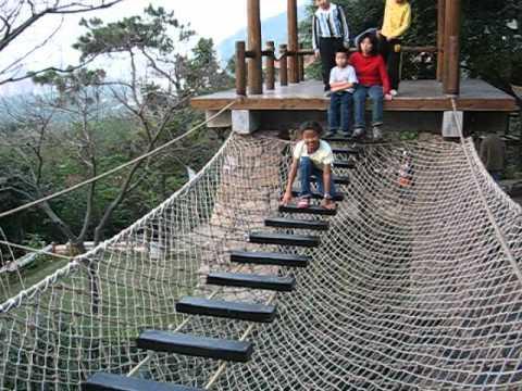 Bridge resort swinging idea necessary