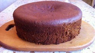 Медовый Бисквит / Sponge Cake / Рецепт Бисквита / Простой Рецепт