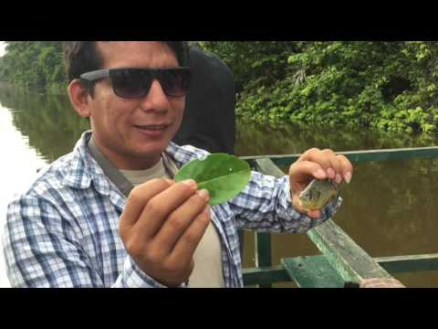 Our awesome Peru and Amazon Jungle Tour