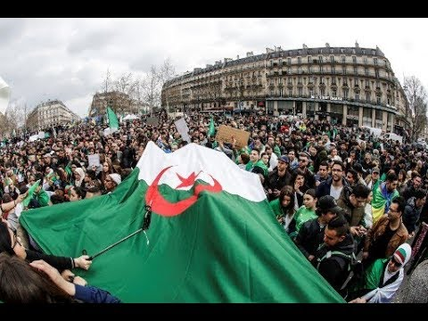 ردود أفعال على طلب تفعيل المادة 102 من الدستور الجزائري  - نشر قبل 6 ساعة