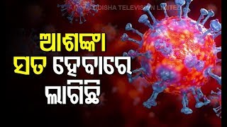 Odisha Corona Positive Cases Touch 20- OTV News Editor's Analysis