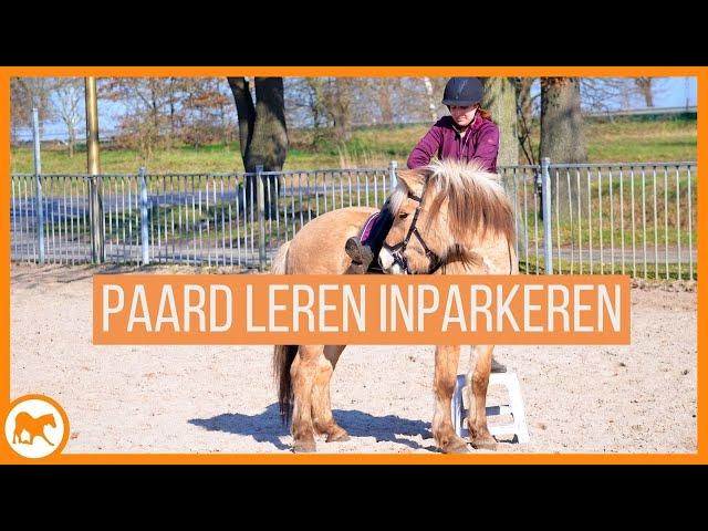 Tutorial: Leer jouw paard zichzelf in te parkeren