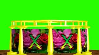 X Name' X Letter 'WhatsApp Status_Green Screen| X letter, 16 Effects chroma key Free Animated | no1