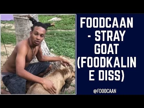 FOODCAAN - STRAY GOAT  (STRAY DAWG REMIX) FOODKALINE DISS
