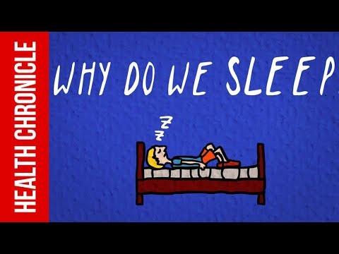 Why Do We Need To Sleep ?