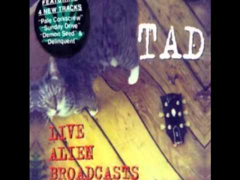 TAD (Stumblin' Man) Live