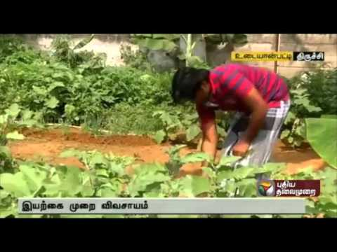 Trichy youth takes up organic farming in free time, gets good yield