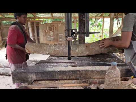 Urgent Buyer Crooked Wood Cutting Requirement/Wood Cutting Sawmill in World