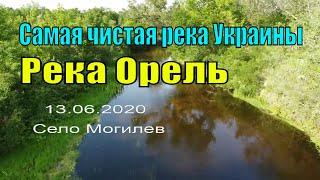 Речка Орель в селе Могилев! Очень красивая природа! Сьемка с дрона! #орель#река