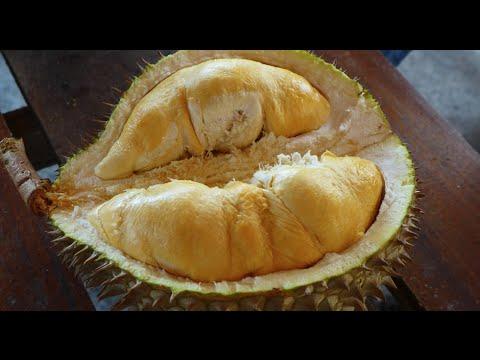 Balik Pulau, Penang : The Durian Lovers Paradise