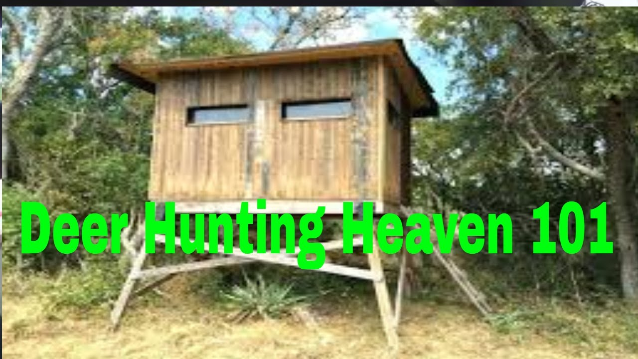 DIY Deer Hunting Box Blind - YouTube