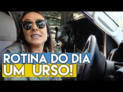 ROTINA DO DIA de VIAGEM no MOTORHOME | Travel and Share