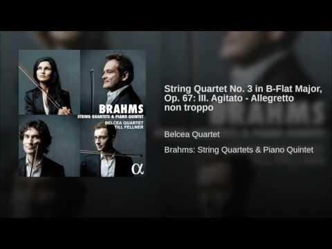 String Quartet No. 3 in B-Flat Major, Op. 67: III. Agitato - Allegretto non troppo