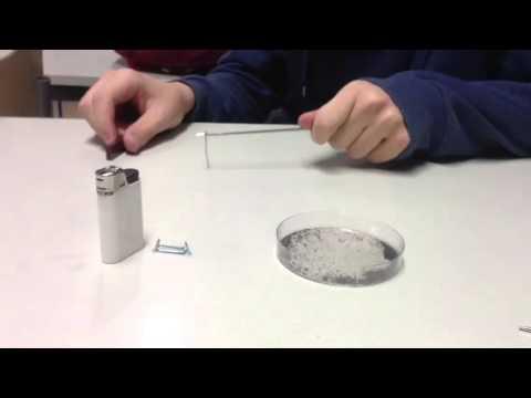 Magnetointi