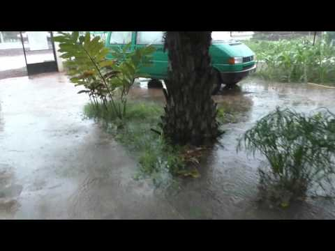 TNR in August in The Gambia: Rain