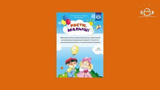 Образовательная программа дошкольного образования для детей с 2 до 3 лет