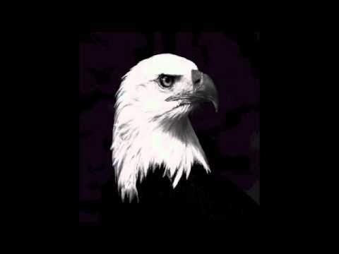 SunchariotBald Eagles of Resistance