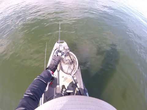 Prespawn Bass Fishing A Power Plant Lake     [Lake Fayette]