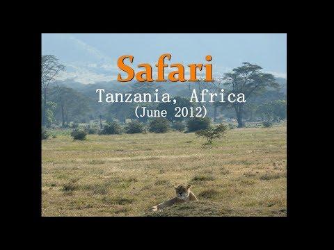 African Safari in the Serengeti (Tanzania) & Zanzibar