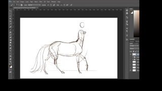 Drawing a female centaur