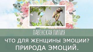 Что для женщины эмоции Природа эмоций Павенская Лилия