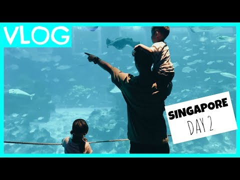 SINGAPORE DAY 2 | #teamBachdim VLOG