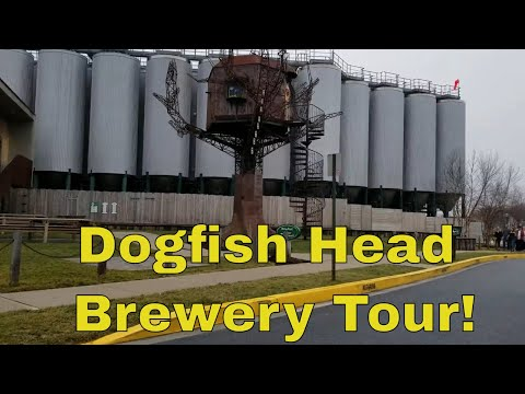 Dogfish Head Brewery Tour And Beer Reviews!