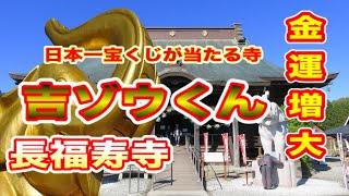 吉ゾウくんと長福寿寺 Gil elephant-kun and length Fukuju temple 【金運増大!開運】Always rise Hakobu Kimu!