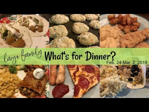 What's for Dinner and Dessert | Unused Vlog Footage! | Large Family Meals