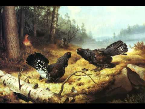 Finnish Art - Taistelevat metsot - YouTube