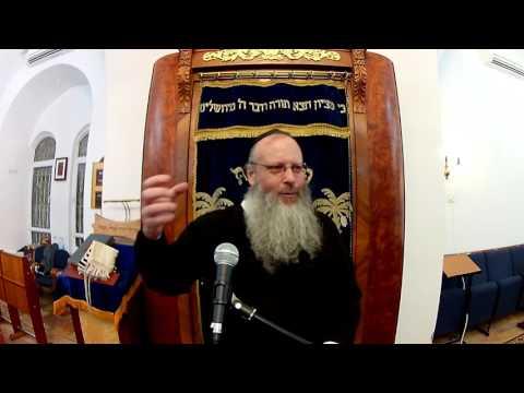 How Does Reincarnation Work? Rabbi Pinchas Winston (complete)