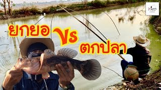 ยกยอตกปลา ม่วนๆ Fishing lifestyle Ep.43