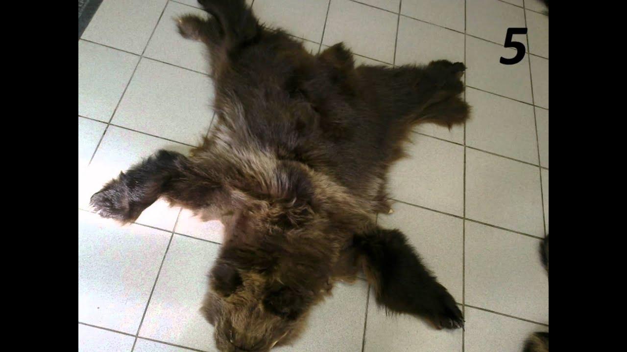 Как и чем выделать шкуру медведя в домашних условиях