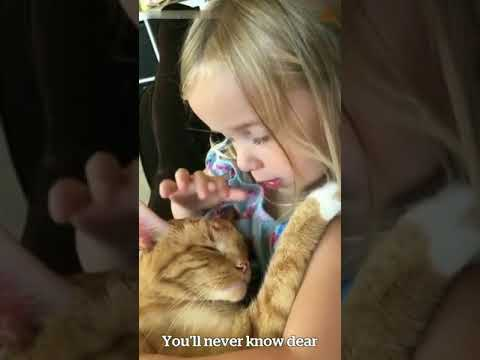 This little girl singing a lullaby to her cat will melt the iciest of hearts