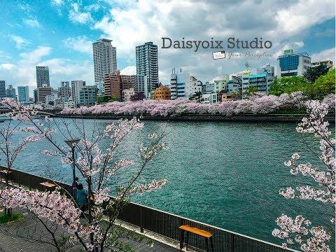 Osaka-Kyoto Cherry Blossom 2017 Trip (GoPro Hero 5 Black)