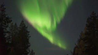 Wow: Northern lights illuminate Lapland sky