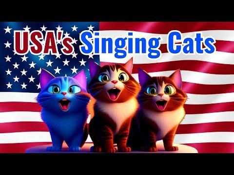National Anthem Of America With Lyrics   Cats Singing The National Anthem